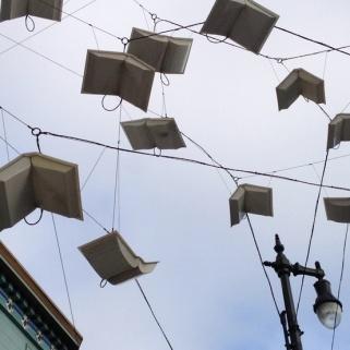Books take flight